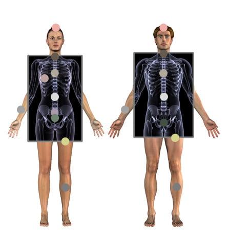 Billede af kroppe for at vise på hvad vi udfører undersøgelser